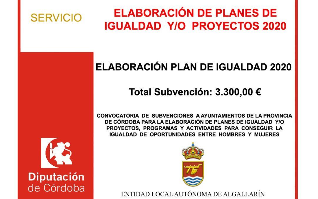 ELABORACIÓN DE PLANES DE IGUALDAD Y/O PROYECTOS
